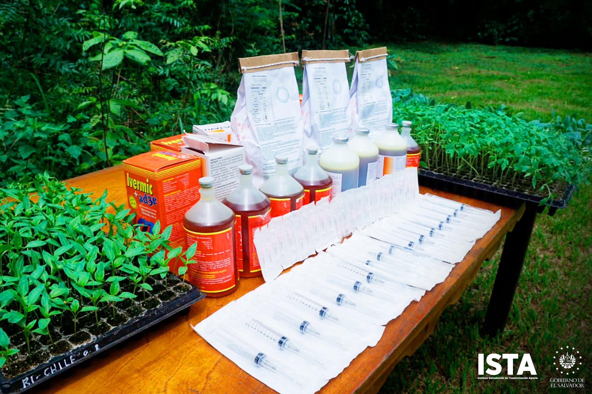 Potencializando la seguridad alimentaria, personal de la Gerencia de las Escuelas Agrarias proporcionaron insumos